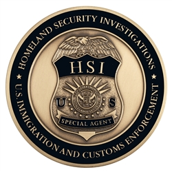 "DHS/ICE-HSI 3"" Medallion"