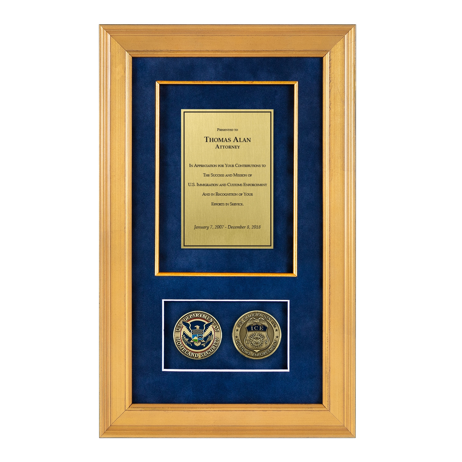 Ice Shadow Box With 2 Coins 226 Gold Frame
