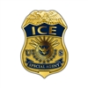 "ICE Badge Lapel Pin – ""SPECIAL AGENT"""